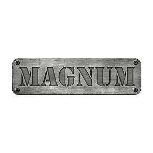 Wieczór kawalerski Gdynia - Magnum Arena